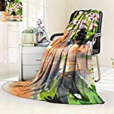 YOYI-HOME Luxury Collection Ultra Soft Plush Massage Composition spa with Candles Orchids and Black Stones in Garden All-Season Throw/Bed Blanket/59 W by 86.5'' H