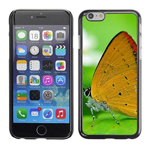 """Premio Sottile Slim Cassa Custodia Case Cover Shell // V00003669 papillon orange sur une feuille // Apple iPhone 6 6S 6G PLUS 5.5"""""""