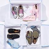 Robeez Baby Boys 6-Pack Socks, Benjamin/Blue, 6-12
