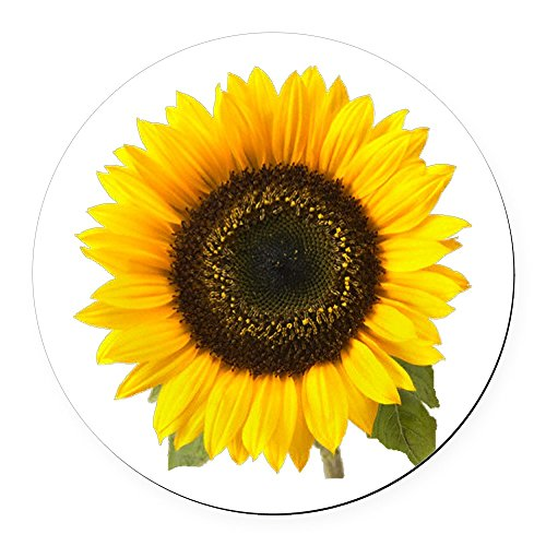 (CafePress - Sunflower Round Car Magnet - Round Car Magnet, Magnetic Bumper)