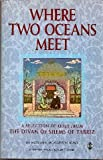 Where Two Oceans Meet, James Cowan, 1852303301