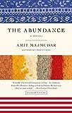 The Abundance: A Novel