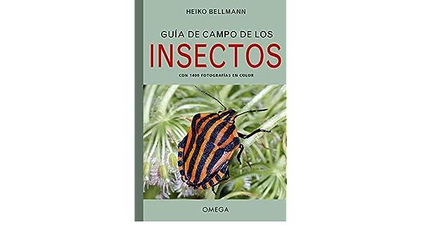 Guía De Campo De Los Insectos (GUIAS DEL NATURALISTA): Amazon.es: BELLMANN, HEIKO, NIETO SILVA, EVA: Libros
