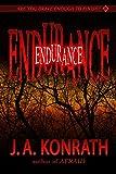 Endurance - A Novel of Terror (The Konrath Horror Collective)