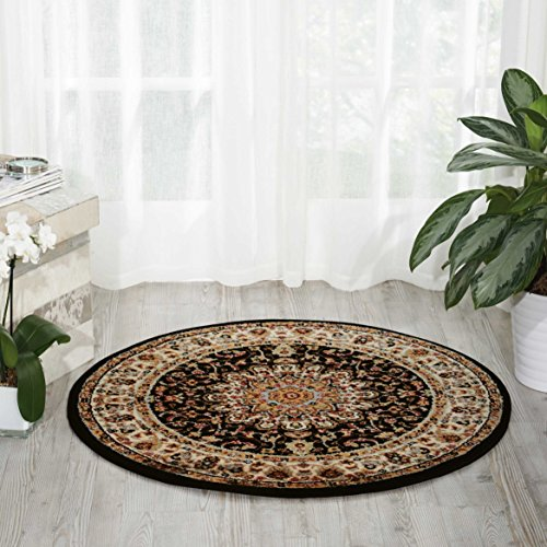 - Nourison Delano DEL04 Traditional Oriental Persian Black Area Rug,  3'4