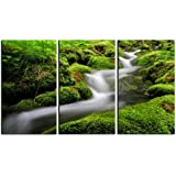 Forest stream print on canvas, framed and ready to hang , tropical forest canvas print, stream canvas print, 3 panel print , rainforest wall art, modern home and office interior décor