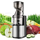 Flexzion Masticating Juicer Machine - Slow Cold Press Juice Extractor Maker Electric Juicing Vertical Stand for Fruit, Vegetable, Greens, Wheat Grass & More with Big Cup & Juicing Bowl
