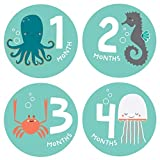 Lucy Darling Baby Monthly Stickers - Gender Neutral - Snorkeling Adventure - Months 1-12 by Lucy Darling