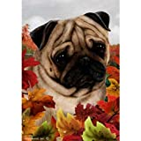 Best of Breed Fall Leaves Garden Size Flag Fawn Pug Review