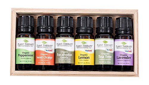 Plant-Therapy-Top-6-USDA-Certified-Organic-Essential-Oils-Set-Includes-Eucalyptus-Lavender-Orange-Peppermint-Lemon-and-Tea-Tree-10mL-13-Ounce-each
