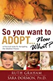 So You Want to Adopt...Now What?: A Practical Guide for Navigating the Adoption Process