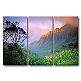 So Crazy Art 3 Pieces Fresh Look Color Wall Art Painting Hawaii Tree Cliffs Sunset Pictures Prints On Canvas Landscape The Picture Decor Oil For Home Modern Decoration Print For Boys Bedroom