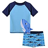 HUANQIUE Baby Boy Swimsuit Rash Guard Swimwear Two Piece Short Sleeve 6-12 Months
