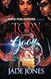 img - for Torn Between a Goon and a Gangsta book / textbook / text book