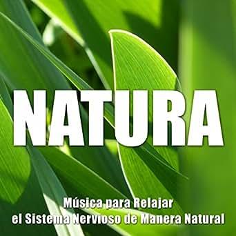 Natura New Age - Musica para Relajar el Sistema Nervioso de Manera ...