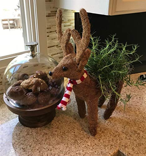 - Ky & Co YesKela Reindeer Topiary Planters