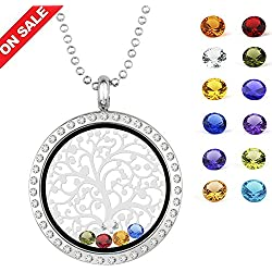 EBOETA Birthstone Pendant Necklace Floating Charm Locket Necklace Gifts for Mom Grandma Sister Friends
