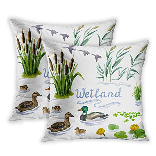 Sgvsdg Set of 2 Throw Pillow Cover Raster Colorful Some Wetl White Botanical Sources Book Magazine Places Nearby Water 16 X 16 Inch Square Hidden Zipper Home Cushion Decorative Pillowcase