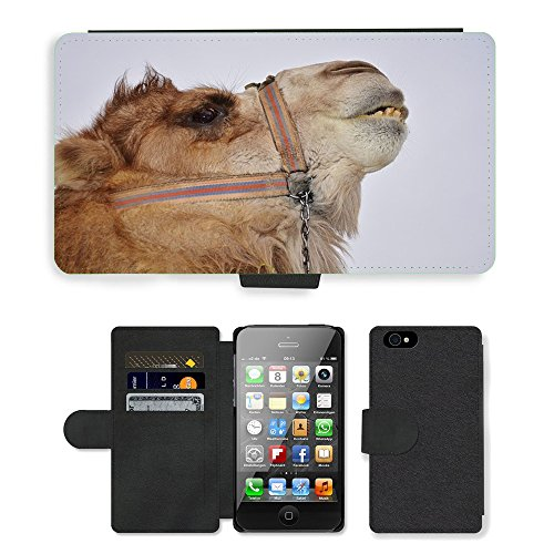 Just Phone Cases PU Leather Flip Custodia Protettiva Case Cover per // M00128528 Camel animal Mammifère Desert Safari // Apple iPhone 4 4S 4G