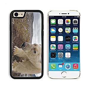 Polar Bear Muzzle Walk Rocks Mud Apple iPhone 6 PC Snap Cover Premium Aluminium Design Back Plate Case Customized Made to Order Support Ready Liil iPhone_6 Professional Case Touch Accessories Graphic Covers Designed Model Sleeve HD Template Wallpaper Photo Jacket Wifi Luxury Protector Wireless Cellphone Cell Phone