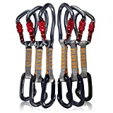 Fusion Climb 6-Pack 11cm Quickdraw Set with Techno Wave Burgundy Screw Gate Carabiner/Contigua Black Straight Gate Carabiner