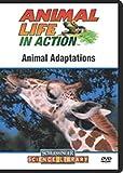 Animal Adaptations (Schlessinger Media)