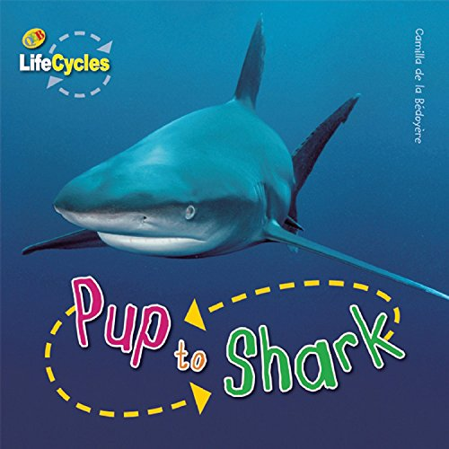 Read Online Pup to Shark (LifeCycles) ebook