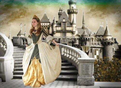 Digital Princess Photography Photoshop PSD (Photoshop Psd Files)