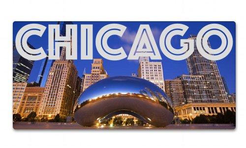 - Chicago Millenium Park The Bean Vinyl Sticker - SELECT SIZE