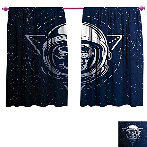 Outer Space Waterproof Window Curtain Dead Skull Head Icon Cosmonaut Costume Astronomy Terrestrial Horror Scare Image Decorative Curtains for Living Room W63 x L45 Grey Blue for $<!--$39.39-->