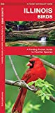 Illinois Birds: A Folding Pocket Guide to Familiar Species (A Pocket Naturalist Guide)