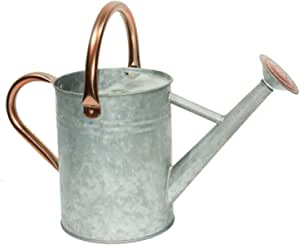 Yourjoy Steel Watering Can Sliver Galvanized Steel Watering Can With Copper Accents Removable Rosette Diffuser One Gallon Garden Outdoor