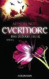 Evermore 4 - Das dunkle Feuer: Roman