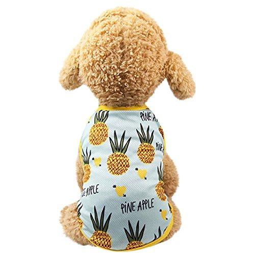 Vest Prince Lovely Pineapple/Strawberry Vest Dress for Pet Dogs (L, Light blue Vest) ()