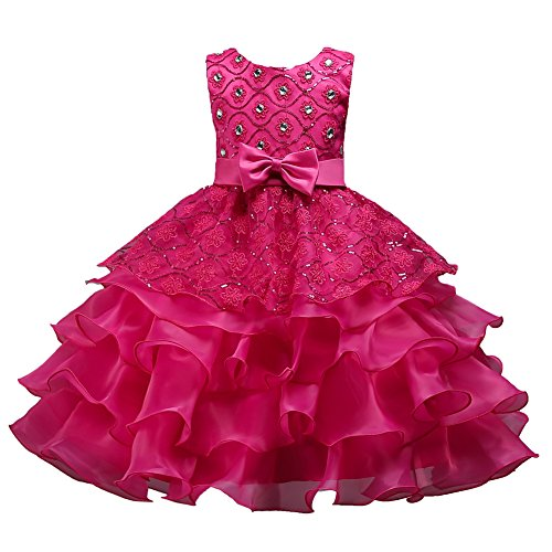 Big Girl Dresses Christmas for Wedding Special Occasion Bridesmaid Dresses for Girls 13-17 Elegant A Line Sleeveless Summer Girl Ruffles Tutu Dresses Size 14-16 15 Years Old Princess Rose -