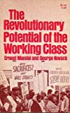 img - for Revolutionary Potential of the Working Class book / textbook / text book
