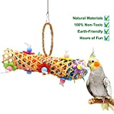 BWOGUE Bird Chewing Toy Parrot Cage Toys Cages Shredder for African Grey Amazon Cockatiel Parakeet Larger Image