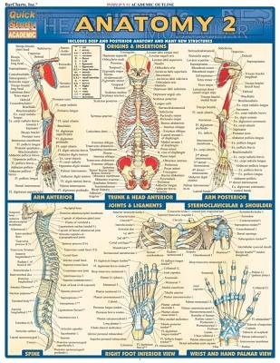 Download Anatomy 2( Includes Deep and Posterior Anatomy and Any New Structures)[QUICKSTUDY ANATOMY 2][Other] PDF