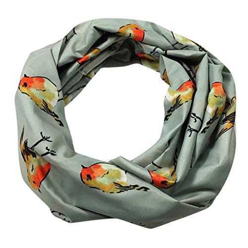 (Pandaie Womens Scarves, Women Loop Scarf Infinity Wrap Hidden Zipper Pocket Warm Travel Couple Scarves)
