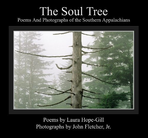 The Soul Tree presents luminous photographs from the Blue Ridge Parkway and lyric poems written in resonance with the images. Each page offers a unique layout design created to elevate and inspire the reader with both the power of art and the power o...