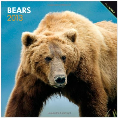 Bears 2013 - Bären - Original BrownTrout-Kalender