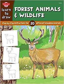 Learn To Draw Forest Animals Wildlife Step By Step Instructions