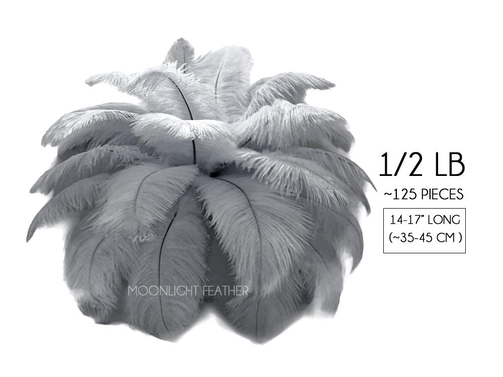 Moonlight Feather | 1/2 lb - 14-17'' Silver Gray Large Ostrich Drab Wholesale Feathers (Bulk) Party Centerpiece, Costume Feathers