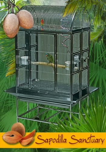 Sapodilla Sanctuary Stainless Steel Large Bird Cage - Perfect for Parrots, African Greys, Large Parakeets, Cockatiels, Canaries, Conures - 30''W x 21''D x 64''H - Cage Only by BirdCages4Less