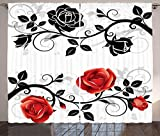Red and Black Curtains by Ambesonne, Abstract Backdrop Floral Rose Swirls Ivy with Leaves Spring Image, Living Room Bedroom Window Drapes 2 Panel Set, 108 W X 84 L Inches, Pale Grey Vermilion Review