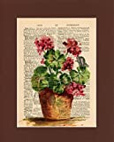 Vintage Dictionary Art Print-Red Geraniums