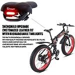 LEONMAR-Bicicletta-elettrica-da-Trekking