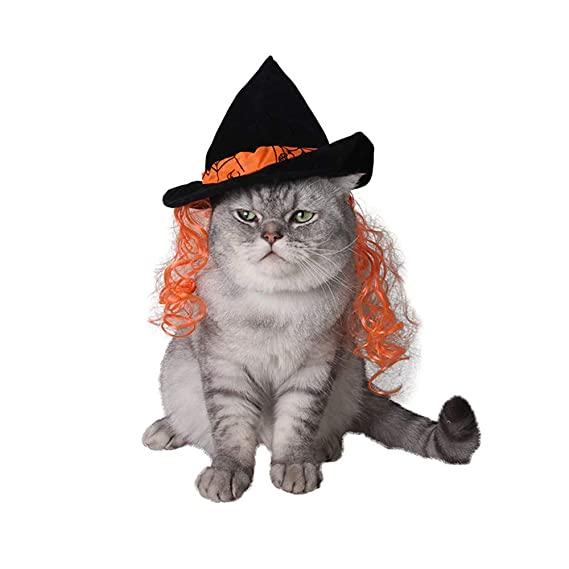 Sombrero de Mago mágico de Gatos, Divertido Disfraz de Halloween ...