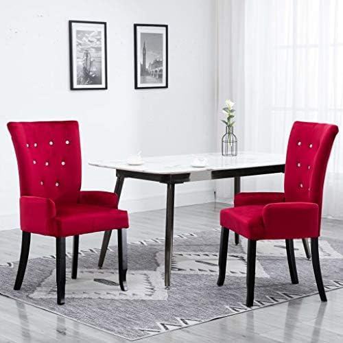 vidaXL 2X Chaises de Salle à Manger avec Accoudoirs Chaises à Dîner Chaises de Repas Meuble de Cuisine Salon Intérieur Maison Rouge Velours