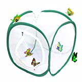 Trasfit 12 Inch Collapsible Insect and Butterfly Habitat Terrarium, Easy Zip-Open Door
